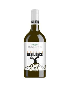 Grillo 2020 Resilience Colomba Bianca