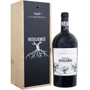 Resilience Perricone 2019 Magnum 1,5 Litri Holzkiste Colomba Bianca